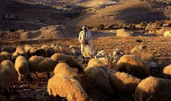 Kisah Nabi Musa dan Pengembala Kambing yang Tidak Khusyuk