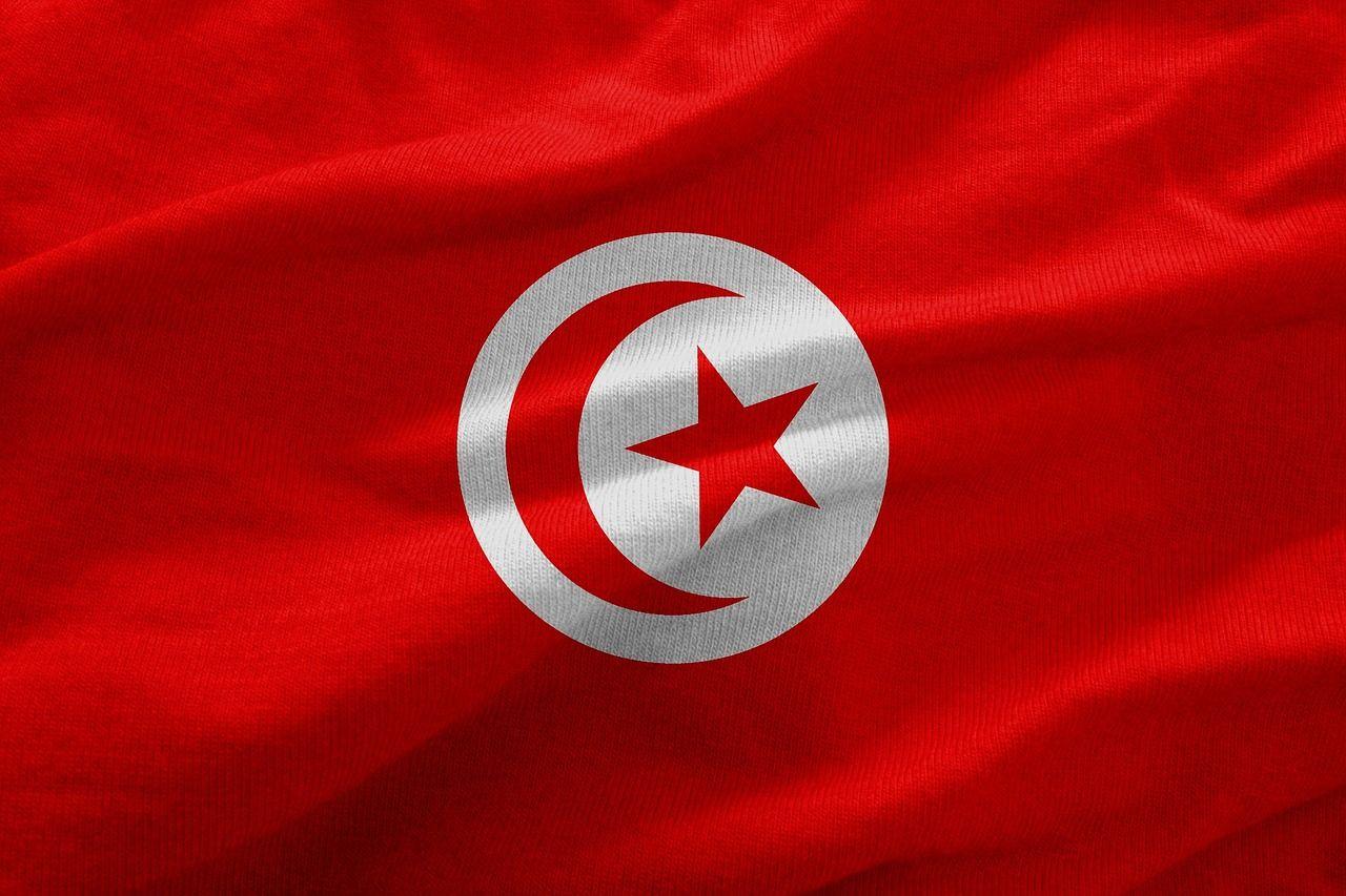 Reaksi Dunia Terhadap Situasi Tunisia